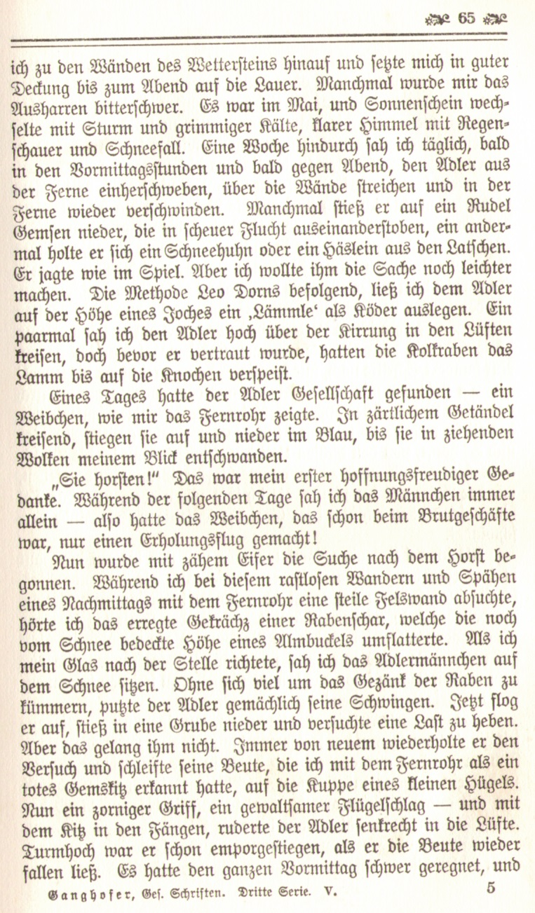 1086_Ludwig Ganghofer - Hubertusland 1912_08p.jpg