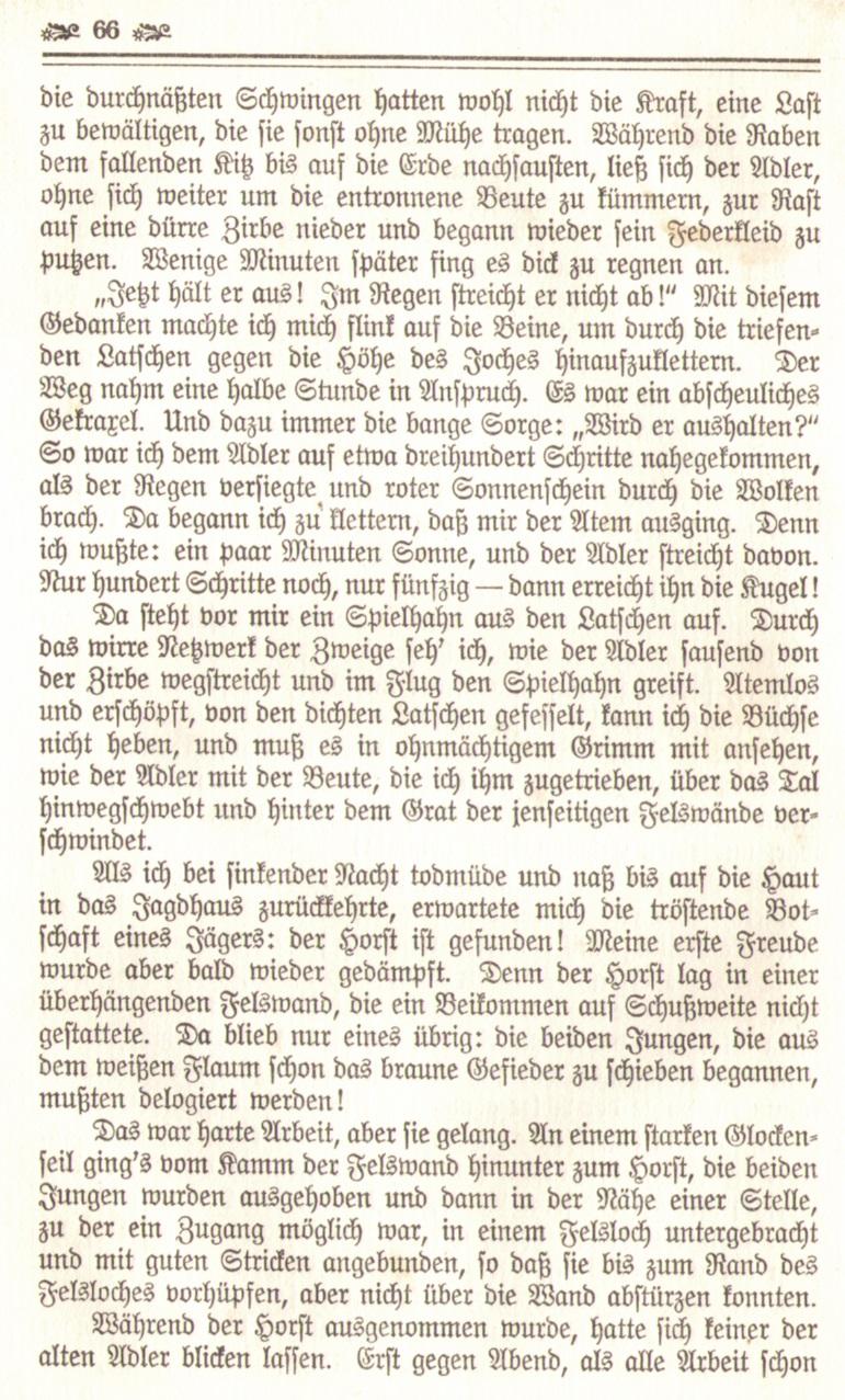 1086_Ludwig Ganghofer - Hubertusland 1912_09p.jpg