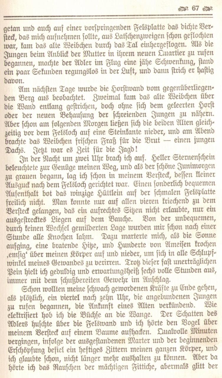 1086_Ludwig Ganghofer - Hubertusland 1912_10p.jpg