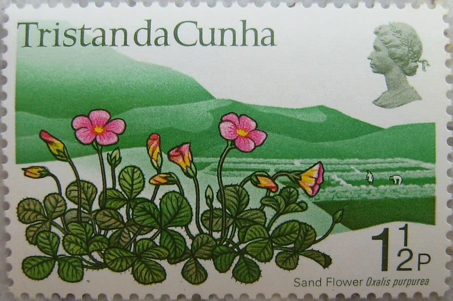 1972_Tristan da Cunha03p.jpg