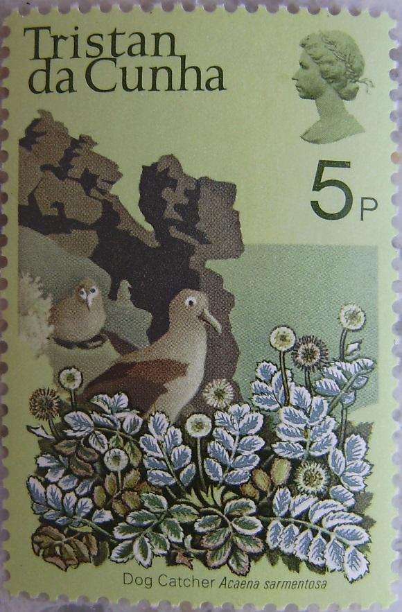 1972_Tristan da Cunha07p.jpg