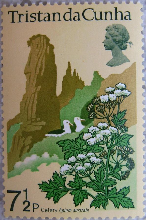 1972_Tristan da Cunha08p.jpg
