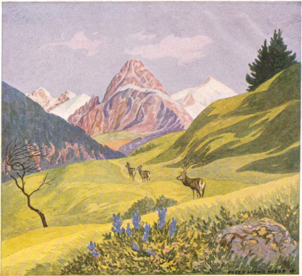 Eugen Ludwig Hoess - Hoefats 1919p.jpg