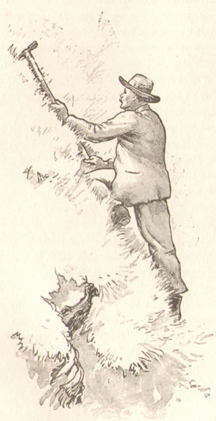 Henry George Willink - A steep slope_Am Rasenhangp.jpg